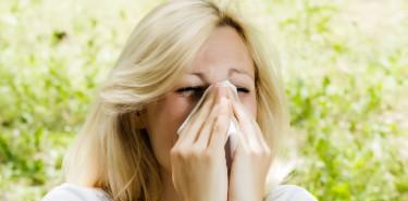 Alergeny aktywne o każdej porze roku
