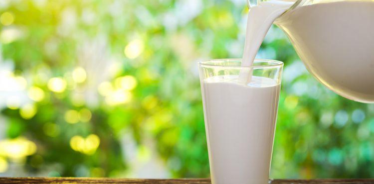 Mleko zapobiega stwardnieniu rozsianemu