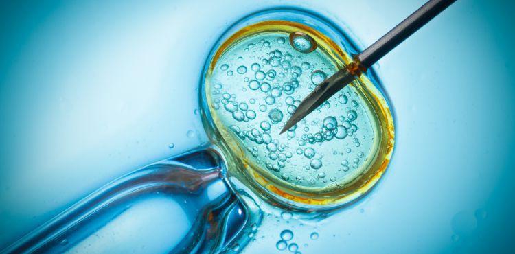 Regulacje prawne in vitro w Polsce w świetle włoskich doświadczeń